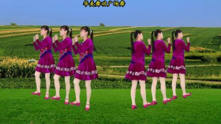 华美舞动广场舞 再唱刘三姐 现代水兵舞 好听好看附教学
