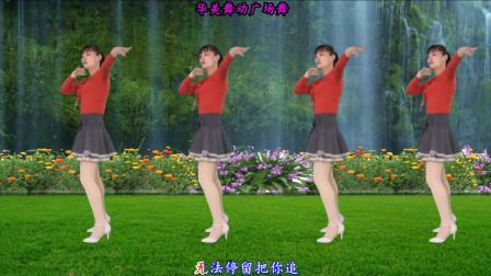 华美舞动广场舞 风雨中的情 简单易学32步健身舞教程 附分解动作