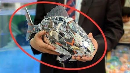 科普一下! 4个以假乱真的海洋机器人, 做的真是像