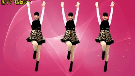 燕子广场舞 亲爱的白马DJ 演唱: 蓝琪儿 音乐好听 舞蹈好看