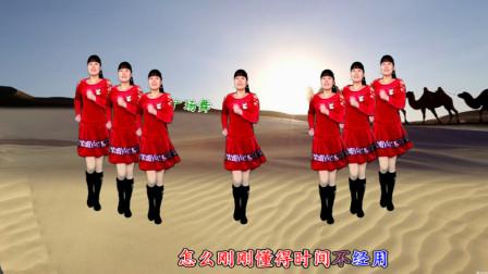 河北青青广场舞 一晃就老了 8步, 唱出人生滋味, 动感优美, 好学好看