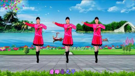 点击观看《河北青青广场舞《花桥流水》8步附教学 适合初学者!》