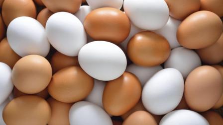 鸡蛋到底选红皮的好, 还是白皮的好呢? 很多人都买错了, 快告诉家人
