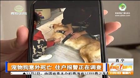 宠物狗中毒, 打了强心针做心肺复苏都没用了, 呕吐物中有红色颗粒