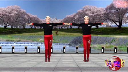 蓝天云广场舞 相思的夜 健身操
