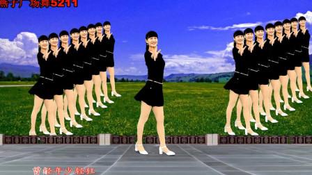 燕子广场舞5211 时间都走了 32步恰恰类型的广场舞视频大全