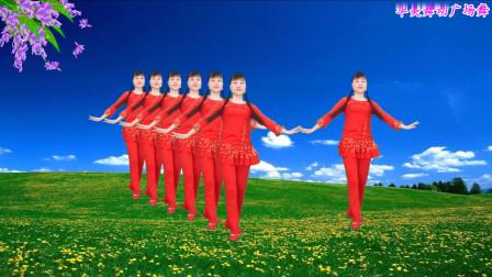 华美舞动广场舞《天上掉下个林妹妹》经典戏曲风格的广场舞教学分解