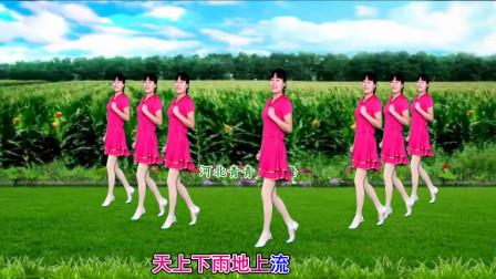 河北青青广场舞《人的命天注定》32步广场舞附舞蹈分解教学