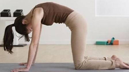 每日瑜伽 缓解脊柱疲劳感的瑜伽动作教学