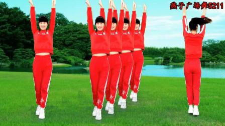 燕子广场舞5211《坐着高铁回家乡》教学分解舞蹈教学视频