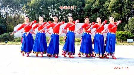 点击观看《明月阳阳广场舞《小卓玛》藏族舞动作分解教学》