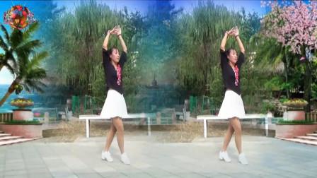 蓝莓思洁广场舞《爱情新感觉》轻松欢快旋律的舞步 好看