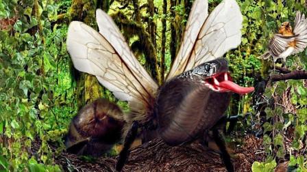 5种碰了要你命的动物,这种虫子每年因其死无数!