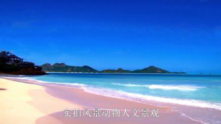 看完了大自然的风景,那就来看看大海的美景吧