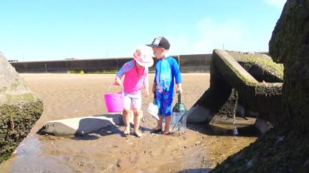 萌娃小可爱们海边玩耍抓螃蟹, 真是有趣呢! —萌娃: 小螃蟹再见,快回家吧!