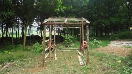 生存哥野外生存体验在森林深处建造小型畜棚养牛视频