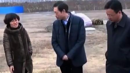 杭州南宋第一大墓被盗严重,考古队空手而归,
