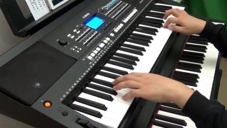《美酒加咖啡》电子琴演奏 by 无名食客
