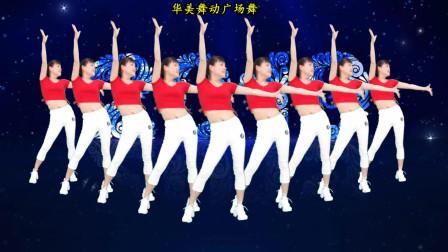 点击观看《华美舞动广场舞《寂寞的人唱伤心的歌》简单欢快好听又好看舞蹈》
