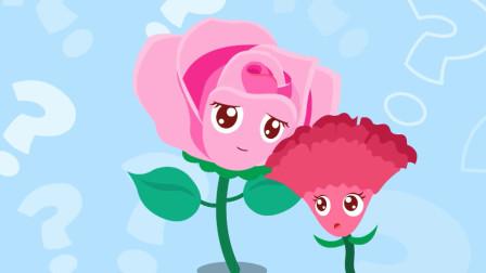 猫小帅故事蔷薇和鸡冠花