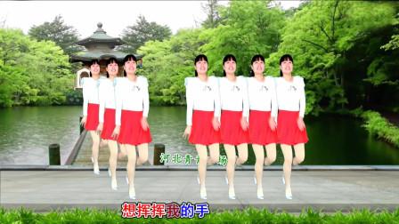 河北青青广场舞《负心的你》入门16步有教学简单易学