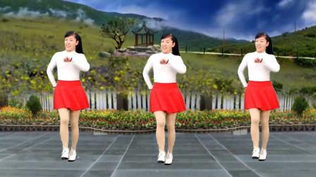 点击观看《玫香广场舞《老婆花》原创32步广场舞教学视频 附分解动作》