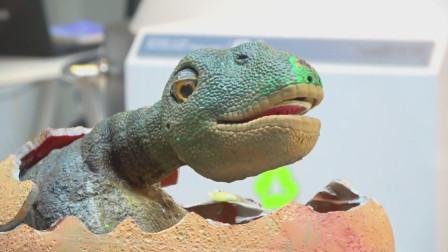 萌娃小可爱去到了一座有趣的恐龙主题公园,萌娃:这只恐龙小宝宝真是萌萌哒!