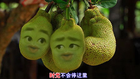爆笑改编榴莲版《一曲相思》,榴莲的表情太搞笑了!