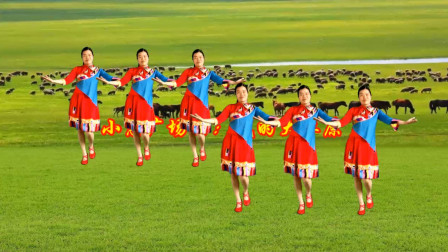 点击观看小慧广场舞《我的大草原》初级入门32步,优美迷人又大气附教学视频