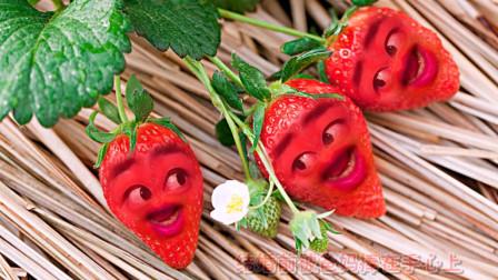 爆笑改编草莓版《媳妇不容易》,草莓的表情太搞笑了!