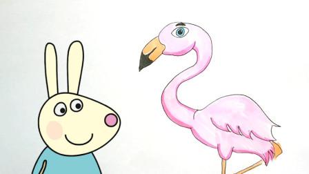 粉红色火烈鸟 –