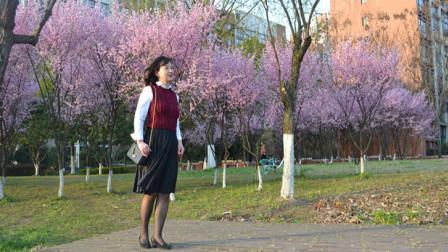女士后背开扣马甲棒针编织视频,后片织法、开叉缝合、挑织衣领(2)