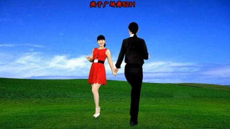 燕子广场舞5211《跟我回家DJ》双人舞对跳 经典老歌 演唱:黄鹤翔