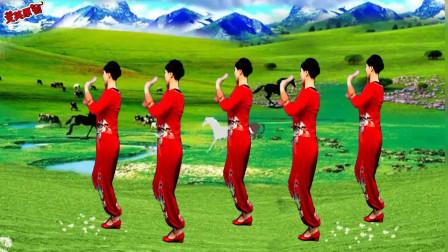 广场舞¡¶藏家乐¡·舞姿优美时尚  简单易学健身