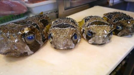 深海剧毒美食,全身都是毒刺,日本大厨切开直接放嘴里吃