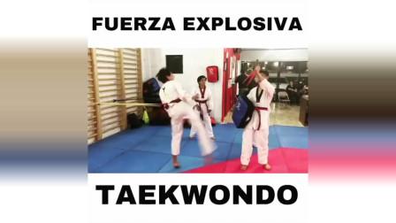 来看看跆拳道竞技训练模式