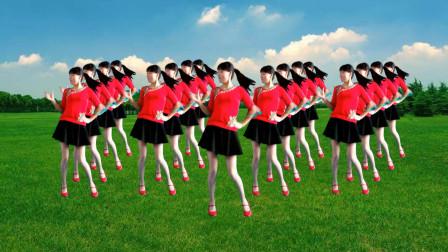 入门精选广场舞《真的真的没骗你》歌美舞更美 简单大方又好看