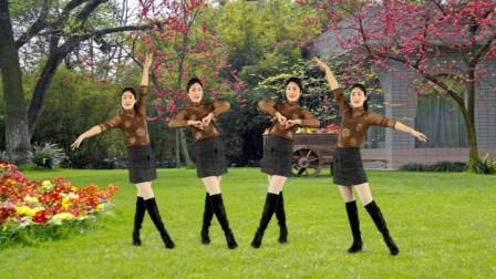 广场舞精选《红枣树》优美抒情,家乡的红枣树是否如故!