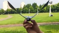 老外创造仿生无人机,由手机把持,飞行方式与真鸟一样