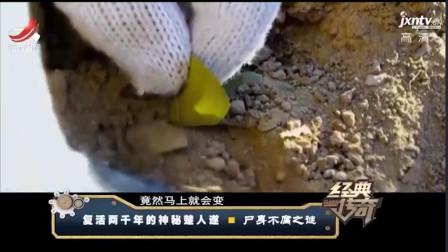考古队挖掘古墓遇奇观,2千年前地下竹子遇光,