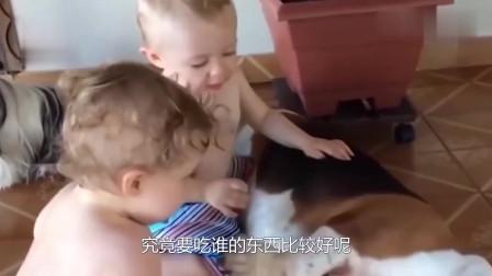 双胞胎宝宝同时喂狗狗,狗狗一脸茫然不知所措,吃谁的好呢?