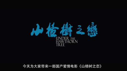 幾分鐘帶你看完國產愛情電影《山楂樹之戀》