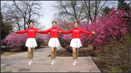 动感DJ健身广场舞《花儿哪有阿妹俏》时尚动感,跟着节奏跳起来!