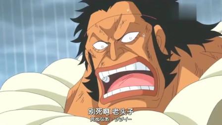 海贼王:索隆对这个友军很忌惮,如果变成敌人会很麻烦的