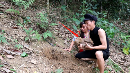 农村兄妹在山上挖的啥野货?直接放竹筒里烧熟吃,味道好极了