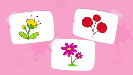 猫小帅故事学画画之花朵简笔画