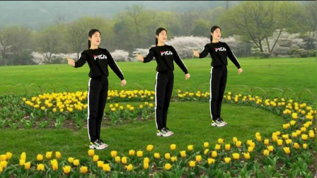 健身舞幸福安康教学 小慧学跳广场舞