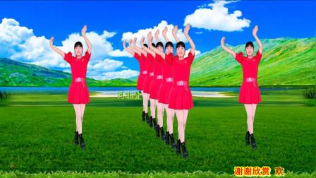 点击观看《32步一步一步分解动作 河北青青我和草原一起来唱歌广场舞教学》