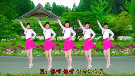 32步广场舞分解动作 妹妹来看我广场舞教学视频