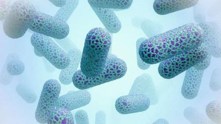 人类是细菌的上亿倍大,放眼广袤宇宙,有生命比人类大上亿倍吗?